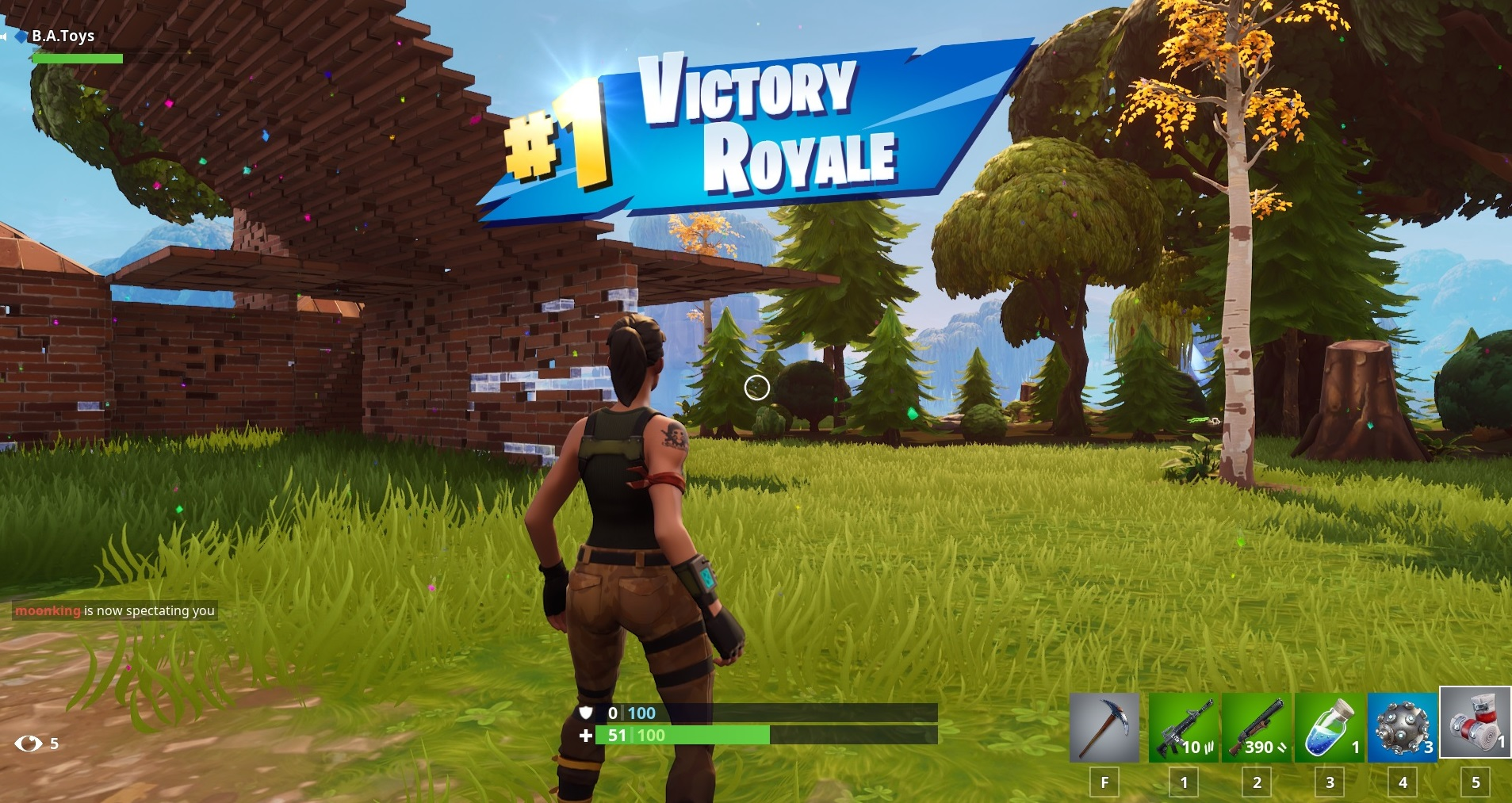 fortnite duo victory